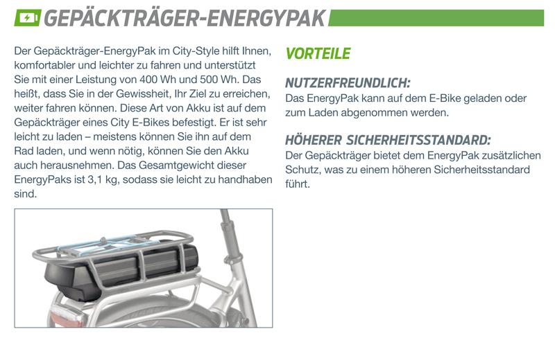 EnergyAkku1