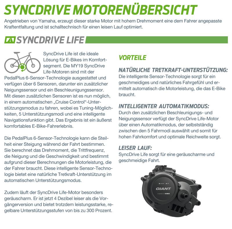 Motort_M1